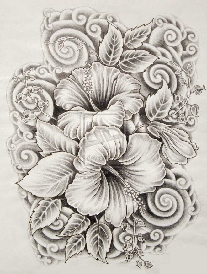 Ilove Drawings Beautiful Flower Drawings And Realistic Color Pencil Drawings